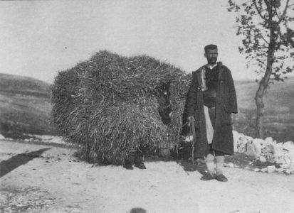Bileca_1915
